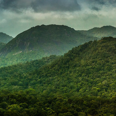 Paysage dans le Parc amazonien de Guyane © Aurélien Brusini