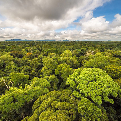 Protéger les patrimoines naturels