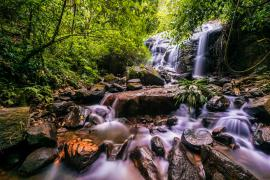 Chutes d'eau visibles sur le Layon des cascades à Saül © Aurélien BRUSINI / aurelienbrusini.com